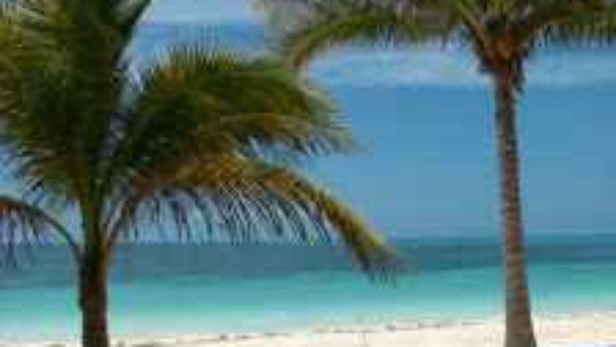 Panama papers, czyli jak trafić do raju (podatkowego)