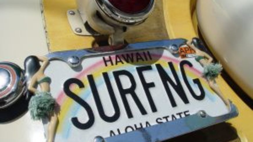 Letnia szkoła surfingu podatkowego