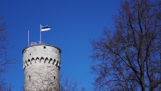 Estoński CIT w Polsce